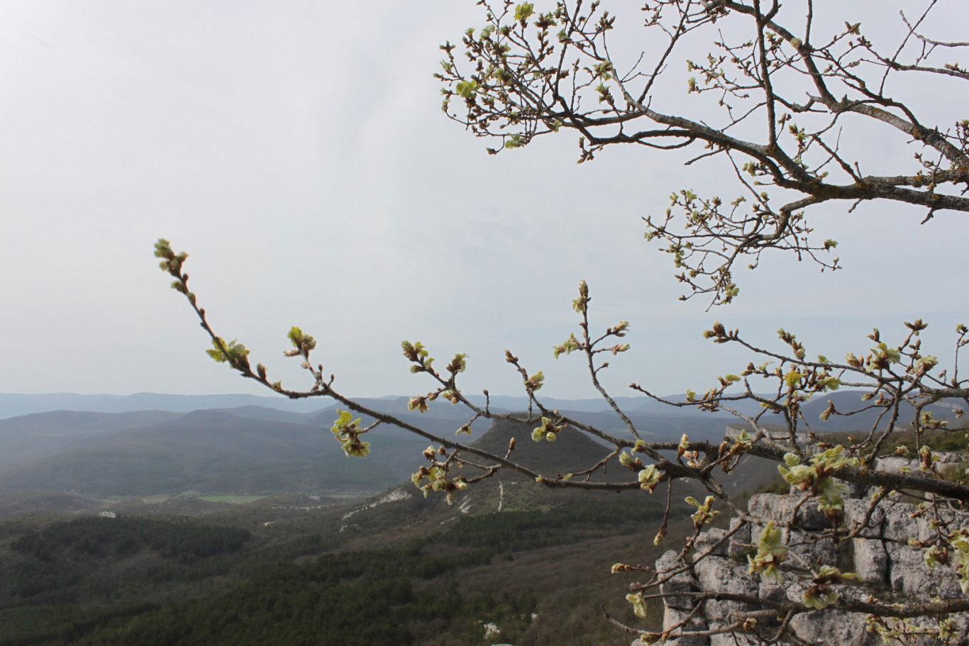 Вид на долину Ашлам-Дере и Крымские горы